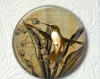 Pocket Mirror Hummingbird  Buy 3 get 1 Free 106