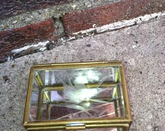 glass box BRASS bird etched display box jewelry box