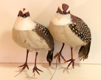 Two Vintage Feathered Quail