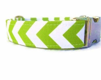 Lime Green Dog Collar with Nickel Plate Hardware
