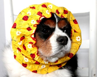 Ladybugs and Daisies Dog Snood / Stay-Put 3 Rows Elastic Thread / Yellow Summer Dog Snood