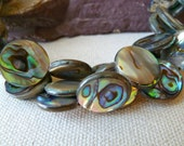 Rainbow Abalone Coin Beads - 16mm - Double Sided - Beautiful Sheen - Qty 6 pcs