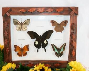 Butterflies in Folk Art Wood Frame, Vintage Art
