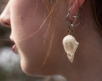 sparrow bird skull earrings - bone white