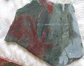 Rough Un-Polished  Red Green Fancy Jasper Cabbing Slab Could be Hampton Green Petrified Wood