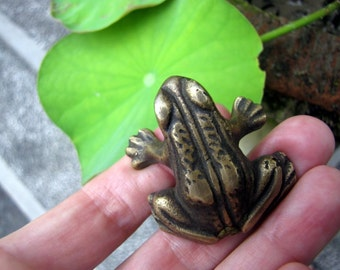 Kodok Frog Brass Drawer Pull or Door Handle