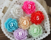 10pcs Beautiful Colorful Rose Flower Resin Cabochon --17mm(CAB-DQ)