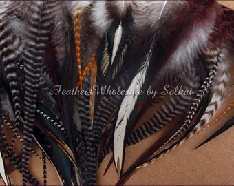 Feathers for Dreamcatchers Big Assortment of Mixed Natural Real Chicken Feathers Bulk Arts and Crafts Feather Supplies 200 Pack
