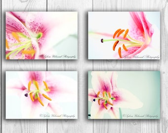 Flower Photography Macro photography Abstract Photography Spring Flower Pink Lilly Nature Photography Fine Art Photography Print Set of FOUR