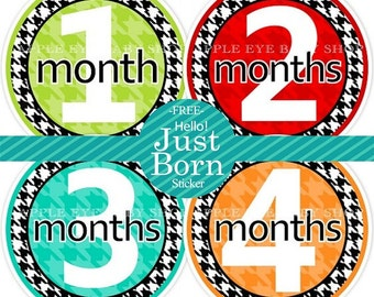 1st Year Baby Month Stickers, PLUS Just Born, Bodysuit Monthly Stickers, Baby Boy or Girl Neutral Milestone Stickers, Houndstooth
