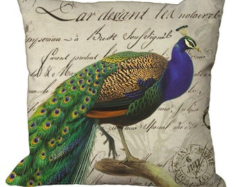 Classic Peacock  on French Script  in Choice of 14x14 16x16 18x18 20x20 22x22 24x24 26x26 inch Pillow Cover