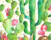 Enchanted Desert 8x10 Print