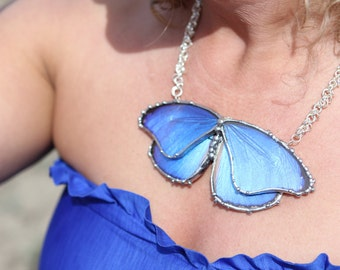 Real Butterfly Jewelry, Large Blue Morpho Didius