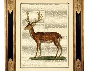 Deer Woodland Forest Antlers Stag - Vintage Victorian Book Page Art Print Steampunk