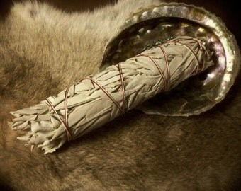One Extra Large White Sage Wand- Smudging Sage- 9 inches or 22.86 centimeters