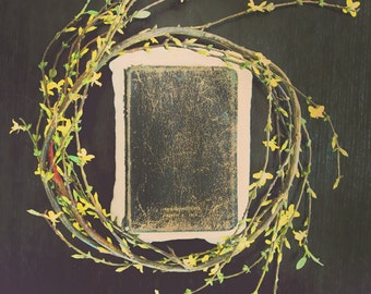 Bible verse wall art, bible art, book art, home decor wall art, art prints, still life photography, canvas art, framed art, framed print