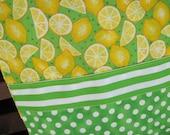 "14"" x 14"" FOOD PILLOW COVER - Celebrate Sunshine Citrus Lemonade Grove Vitamin C with Limes"