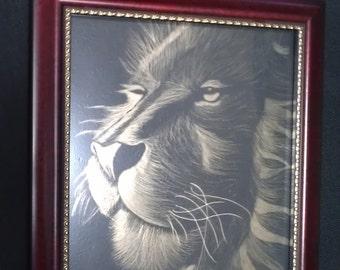Scratch art lion