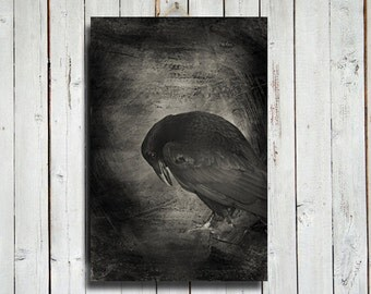 The Raven - Gothic style art - Raven photography - Raven art - Raven decor - 16x24 canvas - Raven canvas