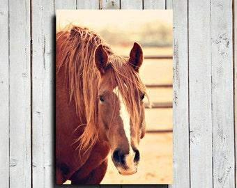 """Chestnut - 16x24"""" canvas print - Horse decor - Horse art - Red horse decor - Horse photography - Chestnut horse photography"""