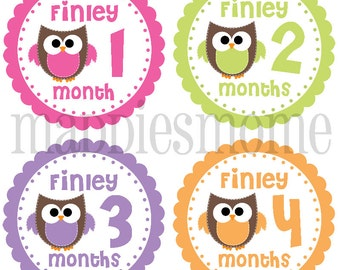 CUSTOM Monthly Baby Girl Owl Stickers, Milestone Stickers, Baby Month Stickers, Monthly Bodysuit Sticker, Monthly Stickers (Clarissa)
