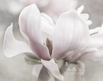 Flower Photography- Soft Pink Tulip Magnolia Photograph, Floral Wall Art,Feminine Decor,Soft Pastel Decor,Nature Photography,Botanical Print