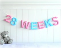 Custom signage banner - Pregnancy photography prop - Belly photo - MADE TO ORDER