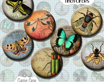 Vintage Insects 1 inch (25mm) Circles Rounds Digital Collage Sheet -  INSTANT Download - Bottle cap Pendant Jewelry - Printable Download