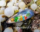 11 x 14 Beach Sea Glass Art Print Photo Print -S