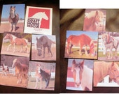 Photo Quilt Squares  Your Images on Fabric