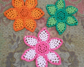 Multi Colored Crocheted Flower Appliques