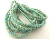 Czech Glass Beads, 4mm Round Druk Beads, Turquoise & Beige - 50 beads