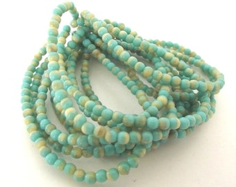 Czech Glass Beads, 4mm Round Druk Beads, Turquoise & Beige - 50 beads