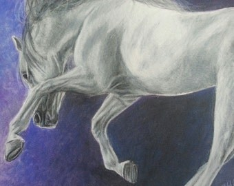 White Horse With Purple and Blue Background Colored Pencil Drawing