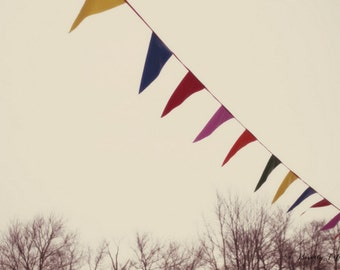 nature, brown, flags, bunting, winter, sky, fine art photogaphy