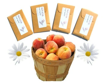 Seed Packet Favors Personalized With Your Message Tranquil Peach Scented Sachets Pick Color Bachelorette Baby Shower Bridal Summer Wedding
