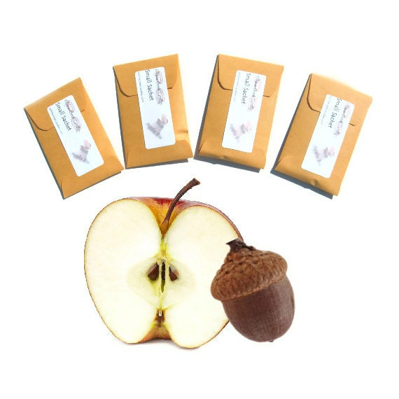 Apples Oak Type Scented Sachets Autumn Party Rustic Wedding Favors Seed Packets Custom Color Envelopes Home Fragrance Mini Fall Decorations