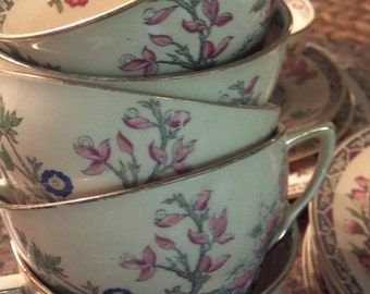 6 cups and saucers J and G Meakin Sol Indian Tree  Beautiful Banyan Tree Design