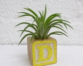 "RESERVED for Liza - Vintage Alphabet Block Air Plant planter - ""D"" and ""L"""