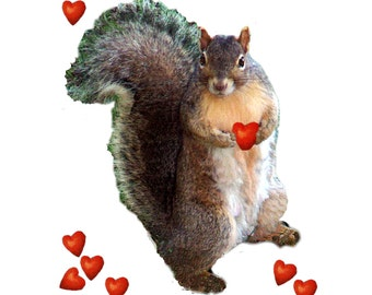 Squirrel Valentine Card for the Squirrel Lover