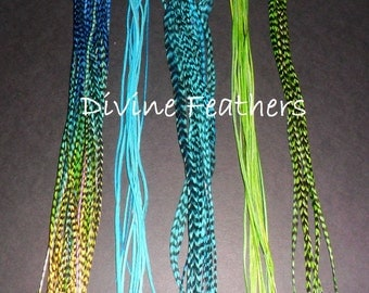 """6 pc Long WHITING Grizzly Feather Hair Extensions kit 9""""-12"""" BEAUTY Divine Feathers"""