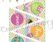 Owl HIghchair Mini Banner. Perfect for your child's high chair at their 1st birthday party. Great for cake smashing photos.