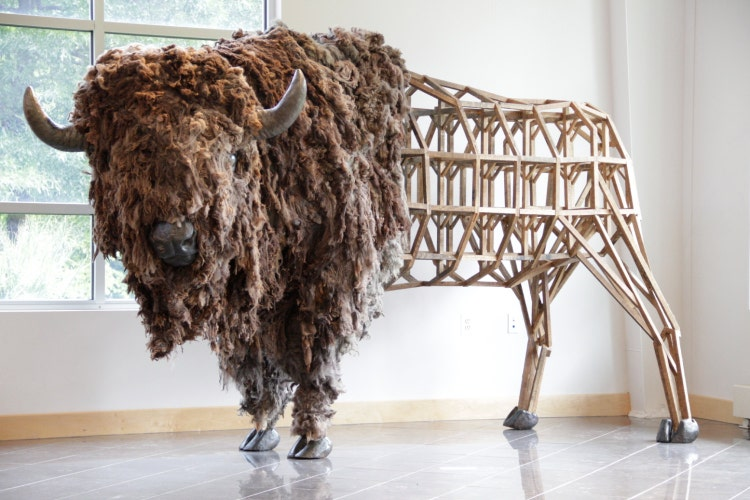 American Bison Sculpture Life Sized Original Fine By