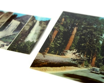 Yosemite National Park Postcards - Set of 2