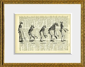 Dictionary Print EVOLUTION OF MAN book page art print - a recycled antique dictionary page with a vintage illustration - wall decor