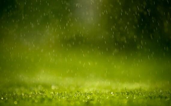 1/2oz Natural China Rain Perfume Oil, China Rain Fragrance Oil, China Rain Scent, China Rain Oil, Lotions and Potions