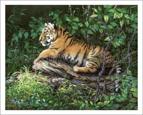 Morning Light Giclee Print - Wildlife Art -Tiger Print - Animal Art - Wildlife Decor - Tiger Cubs