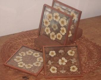 Vintage Pressed Flower Coaster Set