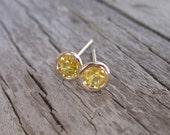 Yellow Sapphire Bezel Stud Earrings in 14K Gold