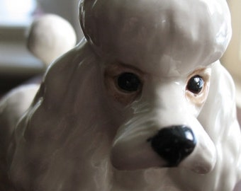 White Beswick Poodle, Made In England